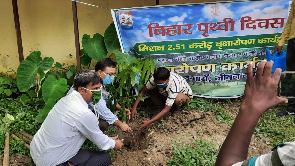 Bihar Earth Day Tree