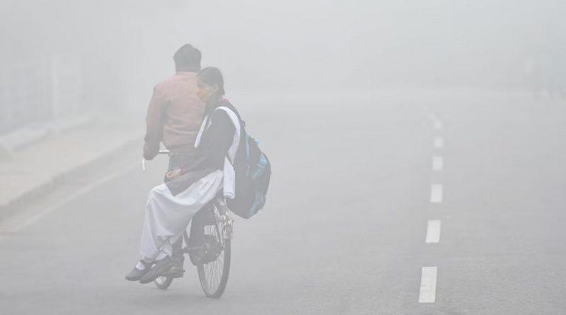Cold Bihar