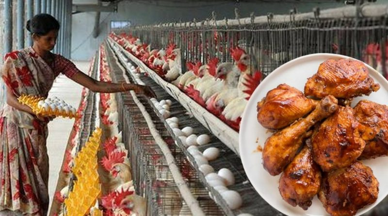 bird flu in bihar