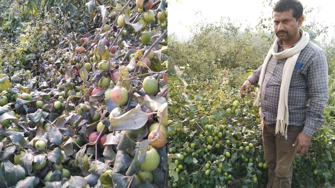 Farmer Begusarai