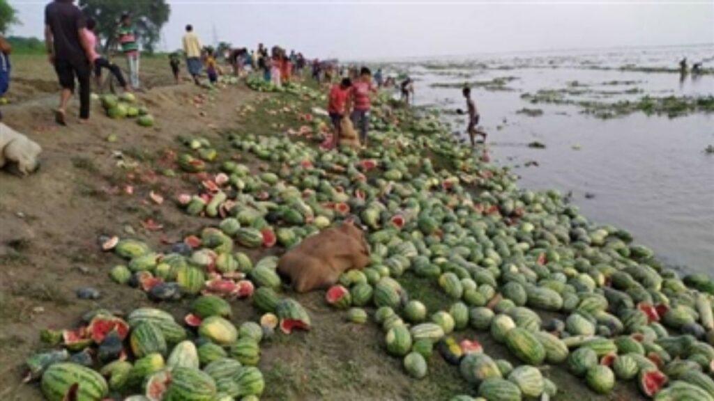 Water Melon Begusarai