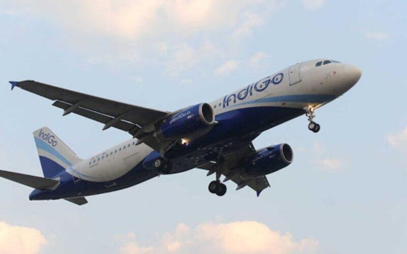 Dharbhanga Airport to Dubai