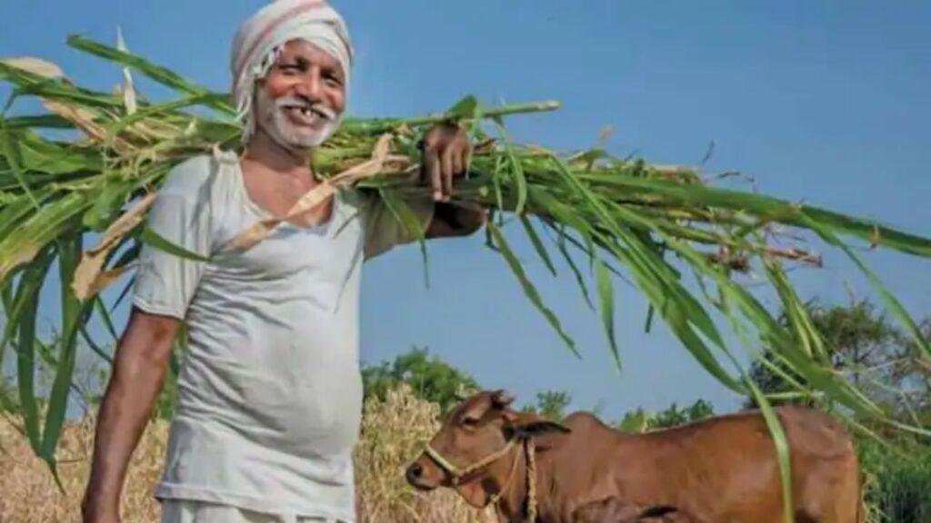 Seeds Bihar