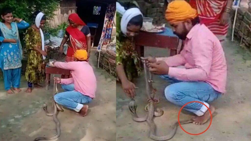 Snake Bihar Raksha Bandhan